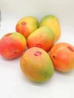 【新品上架】包邮 R2E2澳洲芒果 6个装 单果净重约500g+